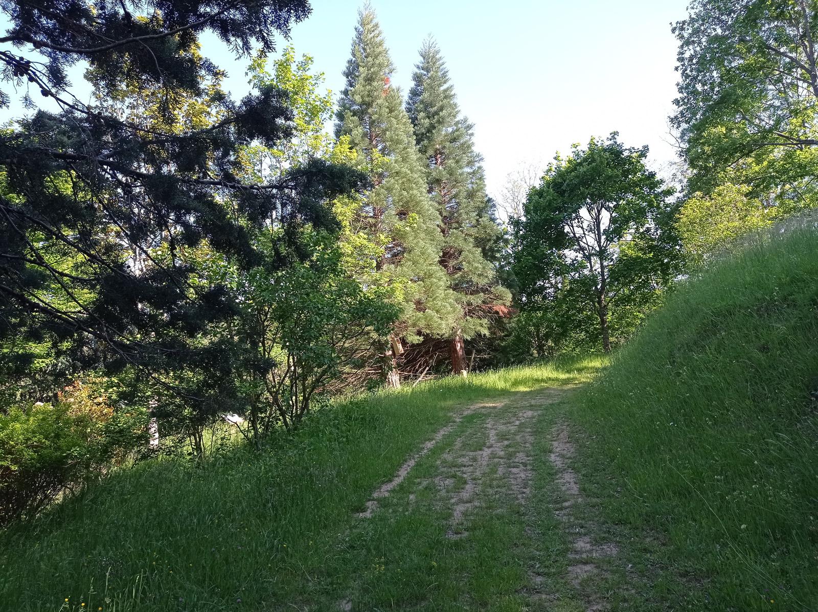 Arboretum Gérard Descours Lamastre